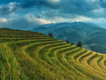 china tour landscape cover.jpg
